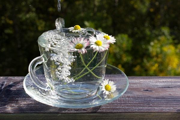 Thiết bị lọc nước uống trực tiếp giúp kéo dài tuổi thọ